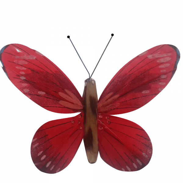 Papillon Animé Ailes Rouges Flambée Printanière
