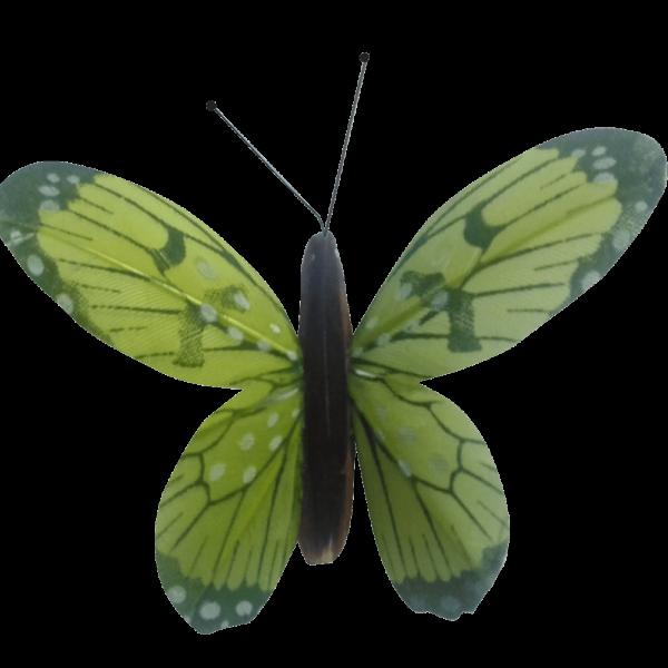 Papillon Animé Ailes Vertes Flambée Printanière
