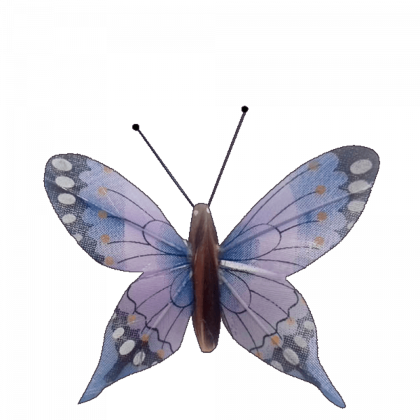 Déco Solaire Vol Papillon Ailes Comète Éphémère Bleu