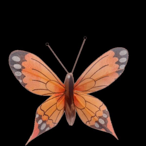 Déco Solaire Vol Papillon Ailes Comète Éphémère Orange