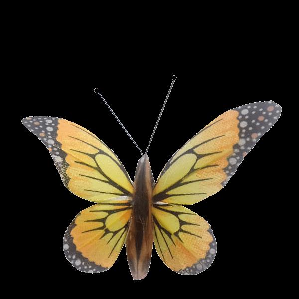 Insecte Décoratif Jardin Papillon Monarque Mariposa Jaune