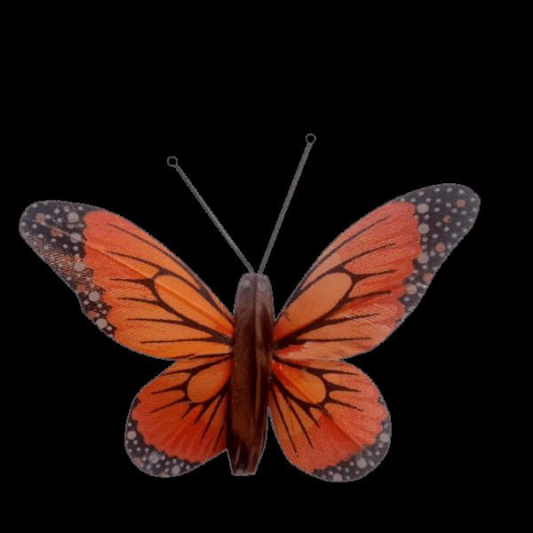 Insecte Décoratif Jardin Papillon Monarque Mariposa Orange