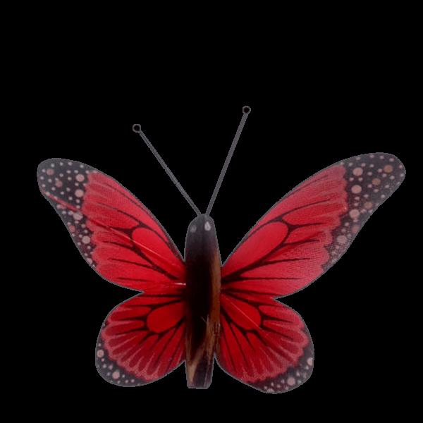 Insecte Décoratif Jardin Papillon Monarque Mariposa Rouge