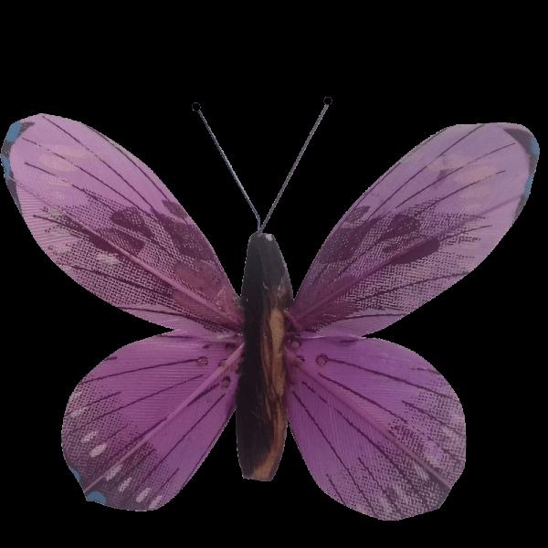 Papillon Animé Ailes Violettes Flambée Printanière