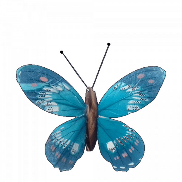 Papillon Écologique Plume Inox Ailes Fier Albatros Bleu