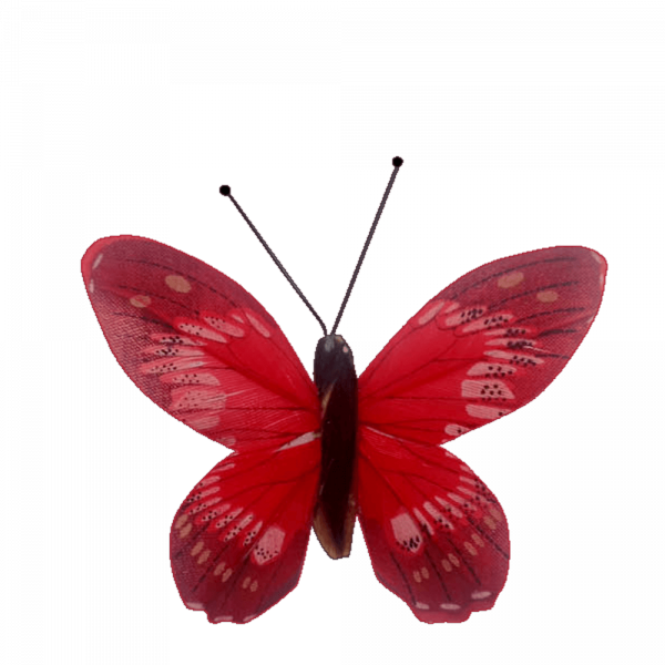 Papillon Écologique Plume Inox Ailes Fier Albatros Rouge