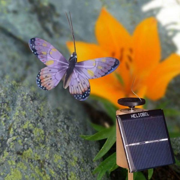 Déco Sans Pile Papillon Volant Jura