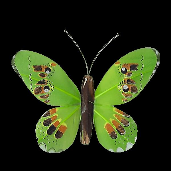 Décoration Énergie Solaire Papillon Apollon Cuivré Vert