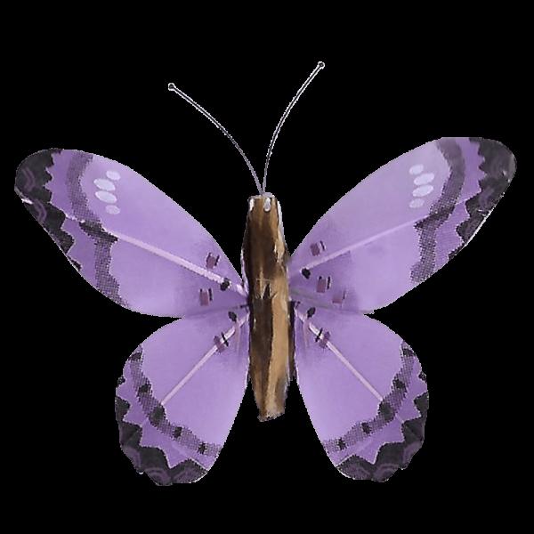Décoration Énergie Solaire Papillon Citron Corail Violet