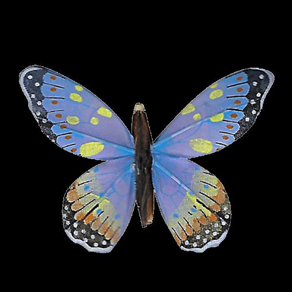 Papillon Animé Ailes Bleues Marbré Espagnol
