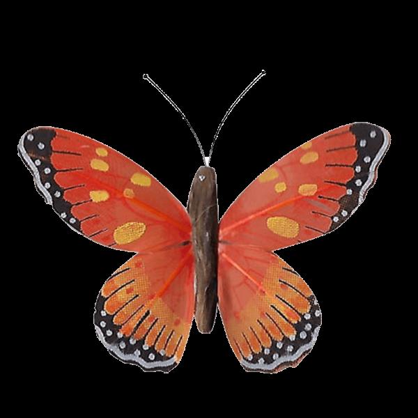 Papillon Animé Ailes Oranges Marbré Espagnol
