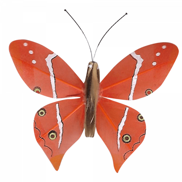 Papillon Animé Ailes Paon Boisé Orange