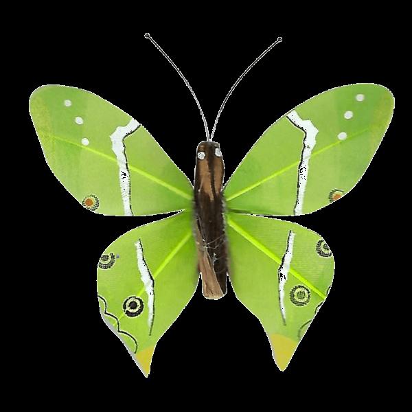 Papillon Animé Ailes Paon Boisé Vert