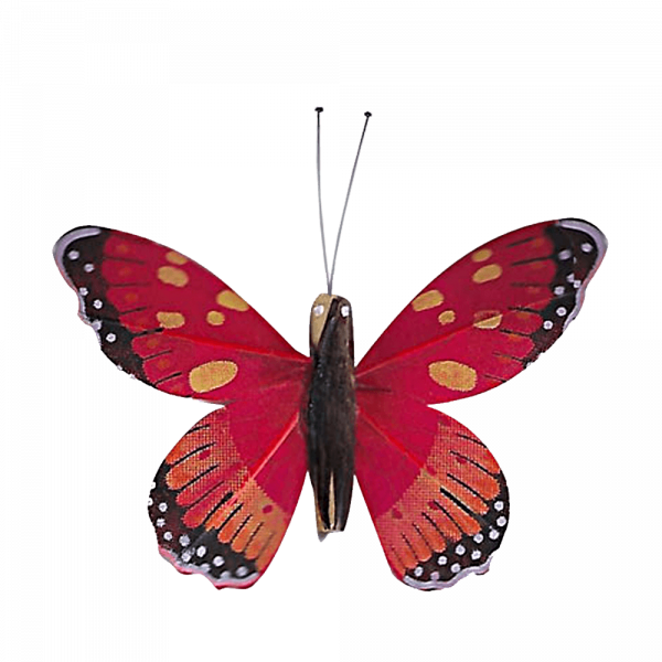 Papillon Animé Ailes Rouges Marbré Espagnol