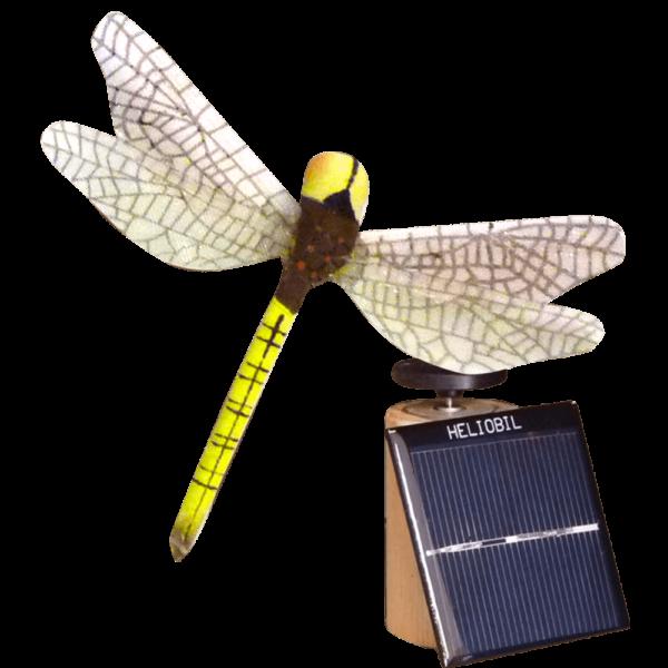 Deco Nature Energie Solaire Libellule Brun Jaune