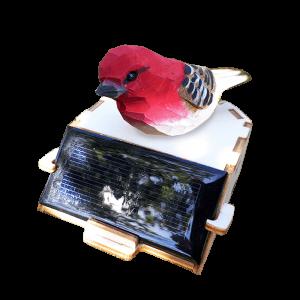 Oiseau Rouge Animé par le Soleil