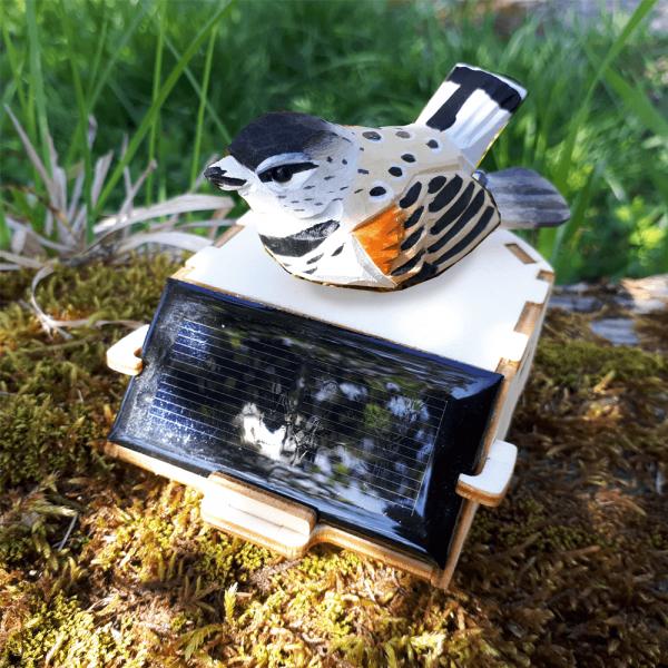 Petit Oiseau Forêt Energie Solaire
