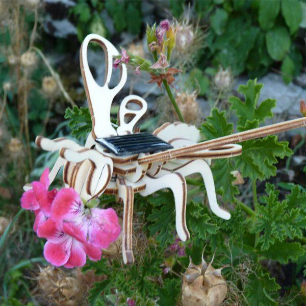 Insecte Solaire Abeille Bois Animée